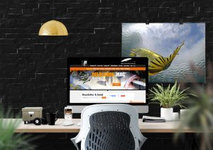Création de sites web Delalande