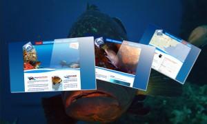 site-web-corse-plongee